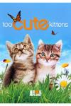 Too Cute! Kittens DVD