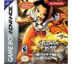 Shaman King: Legacy of Spirits -- Soaring Hawk