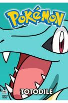 Pokemon All Stars - Vol. 16: Totodile