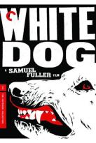 White Dog