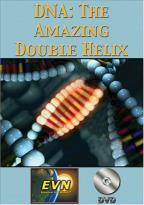 DNA: The Amazing Double Helix