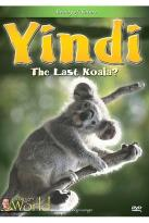 Grainger's World - Yindi, The Last Koala?