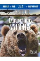 Nature: Extraordinary Animals - Bears and Wolves