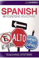 Teaching Systems Spanish Module 13 - Possessive Adjectives