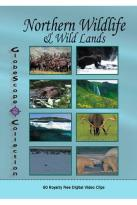 GlobeScope Collection: Northern Wildlife & Wild Lands