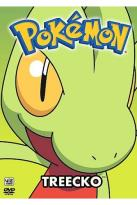 Pokemon All Stars - Vol. 12: Treecko