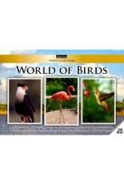 World Class Films: World of Birds