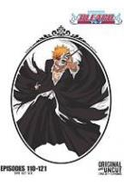 Bleach Uncut Box Set, Vol. 6