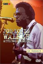 Joe Louis Walker - In Concert: Ohne Filter