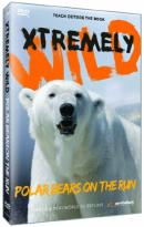 Xtremely Wild: Polar Bears on the Run
