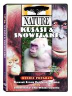 Nature - Kusasi and Snowflake