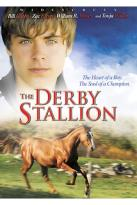 Derby Stallion / Adventures Of The Black Stallion