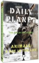 Daily Planet in the Classroom: The Wildlife Series - Animals: A Day in the Life