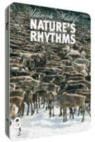 Ultimate Wildlife: Nature's Rhythms