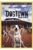 National Geographic: Dogtown - Friends in Need