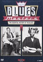 Blues Masters - The Essential History of the Blues - Set