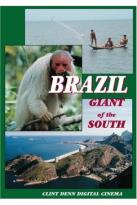 Brazil Giant Of The South