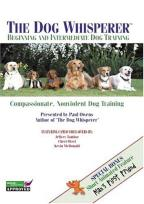 Dog Whisperer - Beginning and Intermediate Dog Training