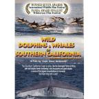 Wild Dolphins And Whales Of Southern