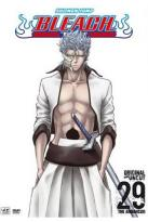 Bleach, Vol. 29