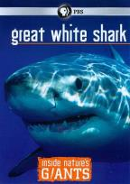 Inside Nature's Giants: Great White Shark