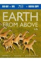 Earth From Above: Life