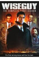 Wiseguy - The Complete First Season