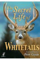 Secret Life of Whitetails