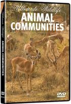Ultimate Wildlife: Animal Communities