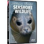 Ultimate Wildlife: Seashore Wildlife