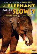 Elephant Called Slowly