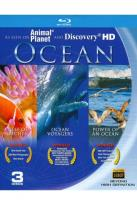 Ocean: Reefs of Riches/Ocean Voyagers/Power of an Ocean
