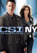 CSI: NY - The Complete Sixth Season