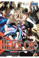 Black Cat - Vol. 4: The Cat's Tale