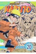 Naruto - Vol. 20: Light Vs. Dark