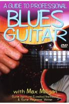 Guide To Professional Blues Guitar