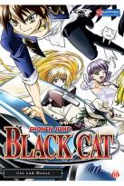 Black Cat - Vol. 3: Cat and Mouse
