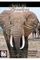Nature Wonders - Amboseli Kenya