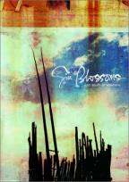Gin Blossoms: Just South Of Nowhere