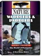 Nature - Waddlers and Paddlers