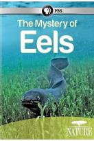 Nature: The Mystery of Eels