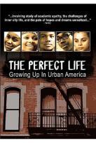 Perfect Life: Growing Up in Urban America