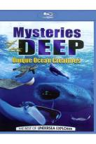 Mysteries of the Deep: Unique Ocean Creatures