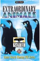 Nature - Nature's Extraordinary Animals Boxset