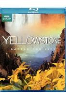 Yellowstone - Battle for Life