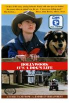 Hollywood: It's A Dog's Life