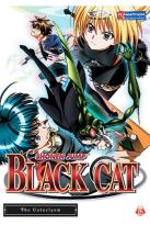 Black Cat - Vol. 5: The Cataclysm