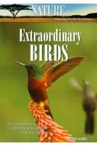 Nature: Extraordinary Birds