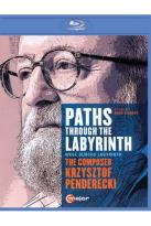 Paths Through The Labyrinth