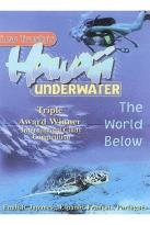 Hawaii Underwater: The World Below
